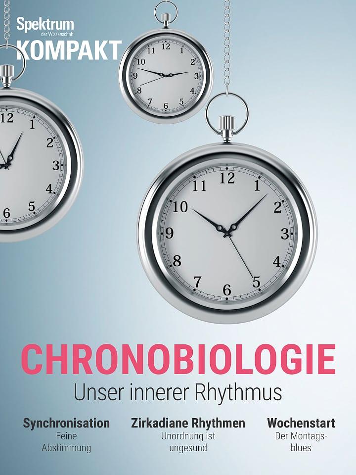 Spectrum Pressure: Chronobiology - Our Inner Rhythm