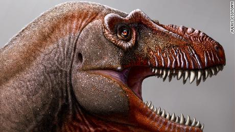 A farmer discovers a new type of dinosaur, one of the oldest dinosaurs to have existed