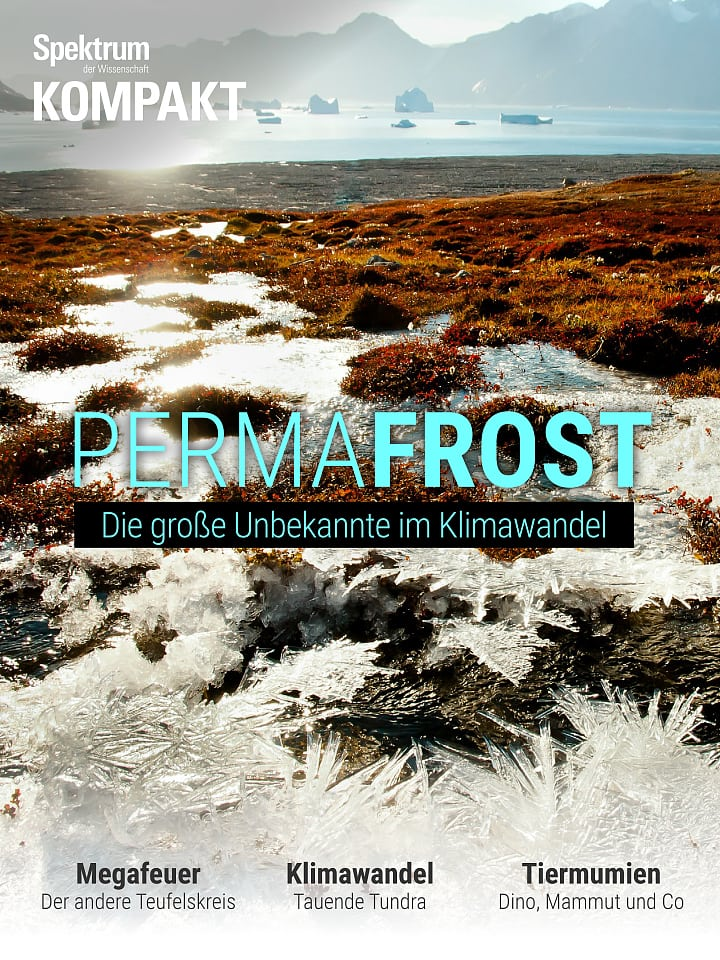 Spectrum in Brief: permafrost - the great unknown in climate change