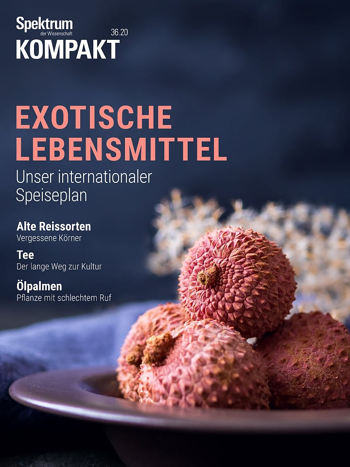 Spectrum Group: Exotic Foods - Our Global List