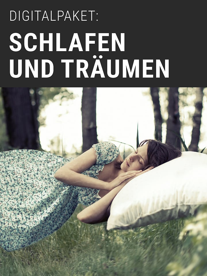 Handbook Cover of the Digital Brain and Mind Package: Sleep and Dream