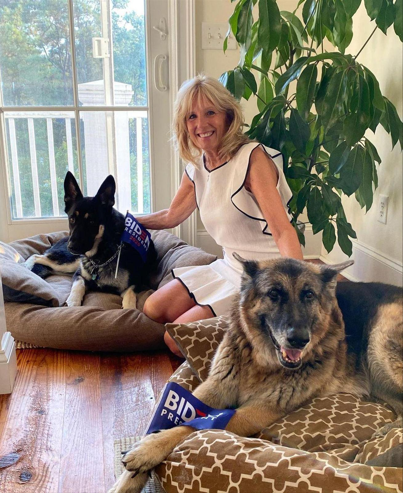 Everything was fine: First Lady Jill Biden with 1st Dog Champion (front) and Major.