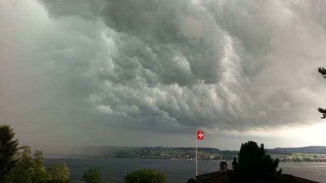 View from Vully to Lake Murten.