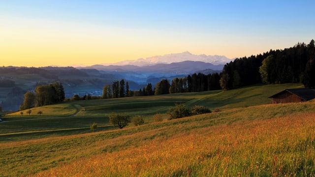 Morning view from Kirchberg towards Alpstein.