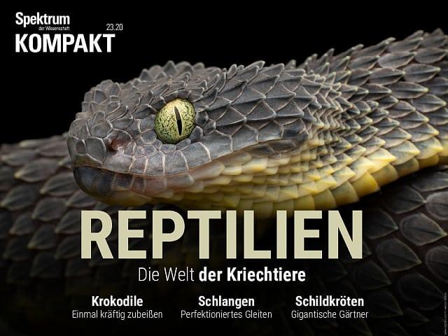 Spectrum Agreement: Reptiles - The World of Reptiles
