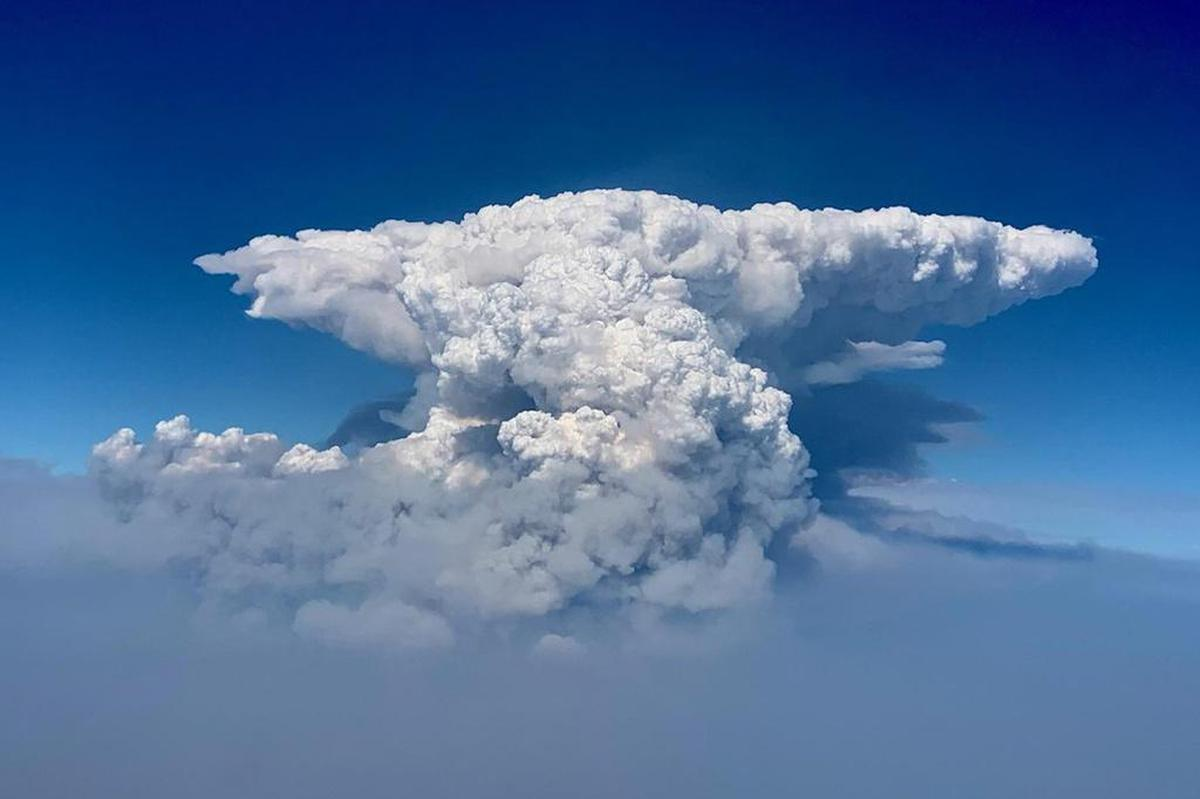 This drone photo shows a cloud of Pyroculus, also known as