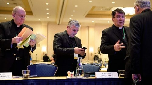 USA: Bishops want to talk about McCarrick Report